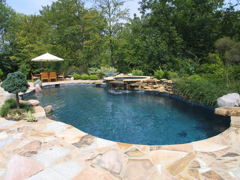 Lovely Natural Gunite Pool · Vanishing Edge Swimming Pool
